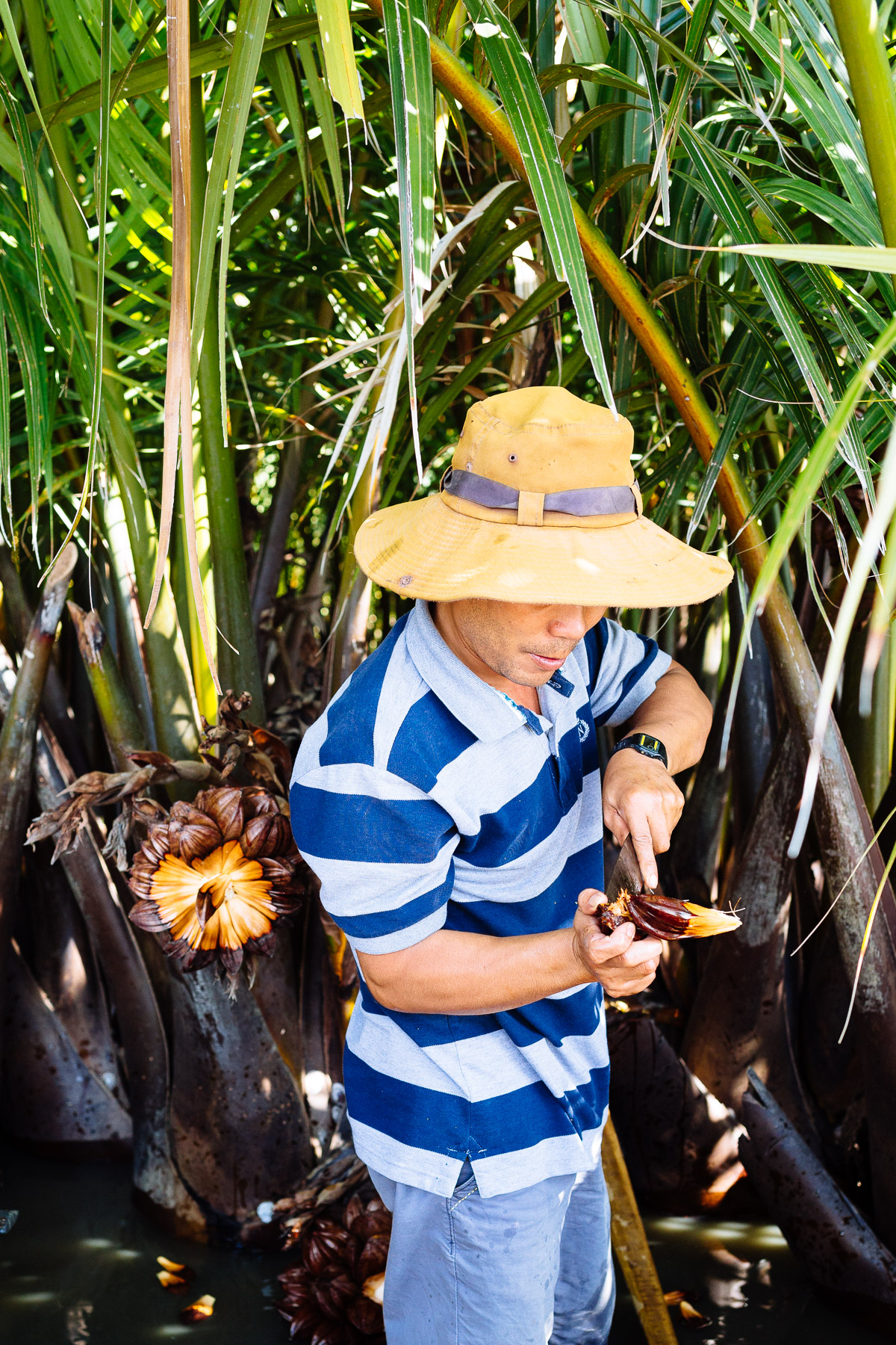 Vietnam_2_18