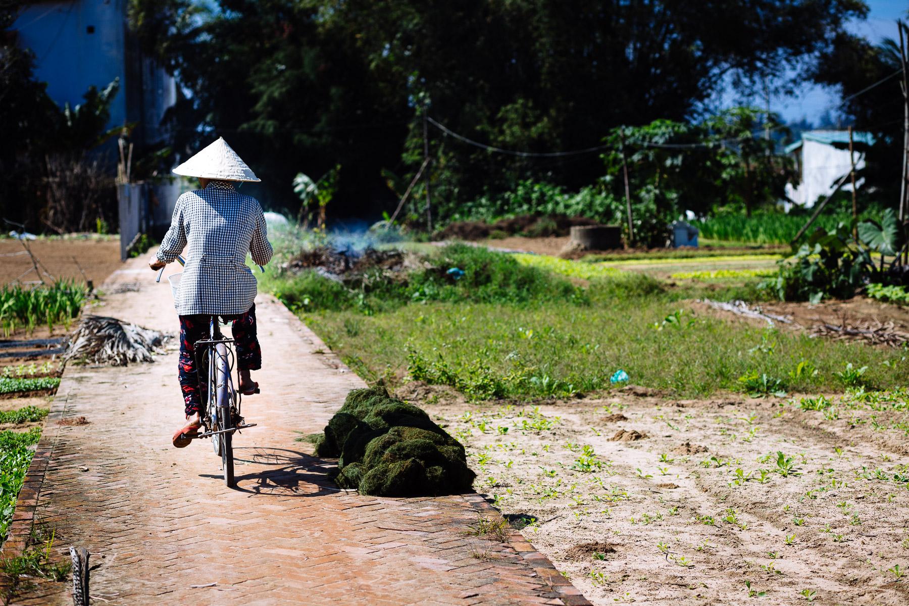 Vietnam_2_29